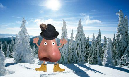 Winter ohne Schnief und Schneuz: Wie man Erkältung & Grippe abwimmelt