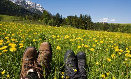 Nein, wir können nicht Freunde bleiben: Tschüss, Frühjahrsmüdigkeit!