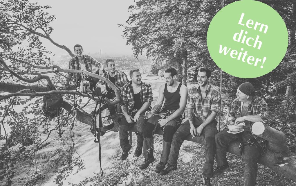Lern' dich weiter: Baumpfleger werden